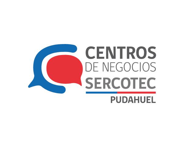 logo-centro-pudahuel-2